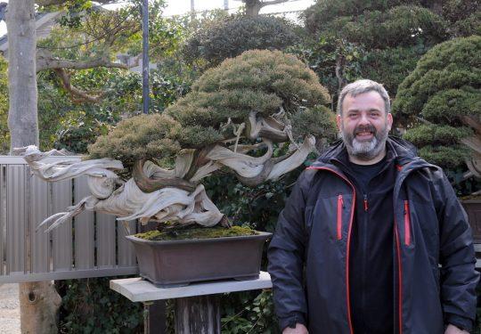 Feb 2018 - nel giardino del maestro M.Kimura
