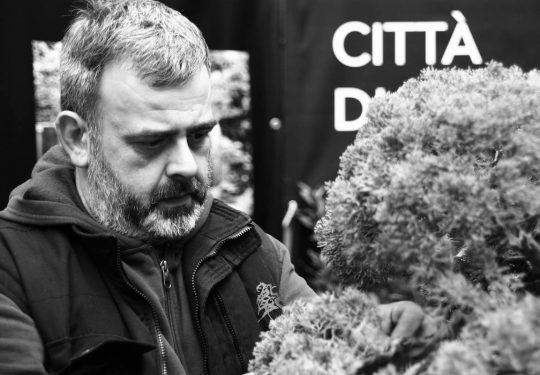 NOVEMBRE 2018 - Demo alla mostra Umbria Bonsai a Trevi (PG)