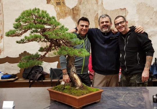 Dimostrazione su pino bianco al congresso IBS 2009 a Trevi. Con Giacomo Bellini e Andrea Matteucci.